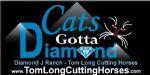 Cats-Gotta-Diamond-Banner.jpg